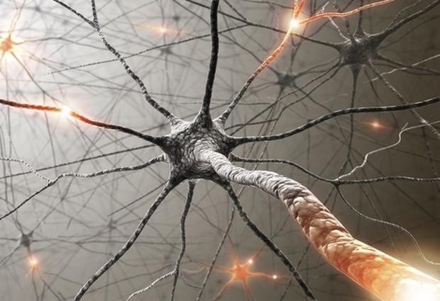 болезнь нервной системы